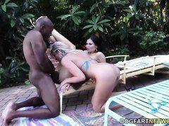 Jasmine Jae и Lexi Lowe сосут большой черный член у бассейна